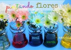 Flores con Tinta a4toner