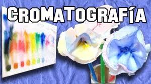 exp cromatografia 4